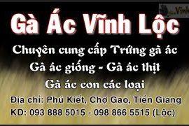 Trại chăn nuôi và bán gà ác Vĩnh Lộc